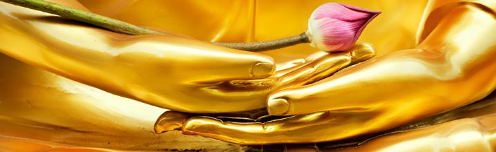 Buddha 718 x 220